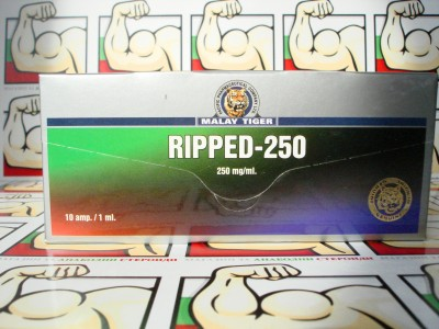 Ripped 250 10amp/1ml Malay Tiger